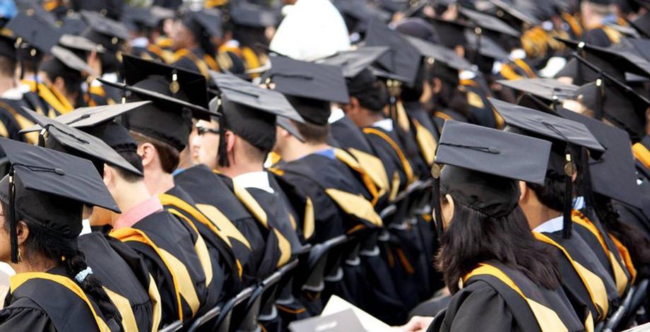 Programa Grado Universitario en UK